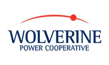 wolverine-silver350